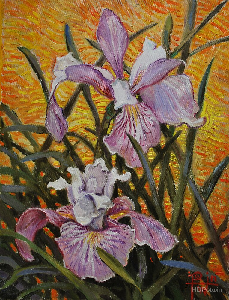 Iris Virginica by HDPotwin