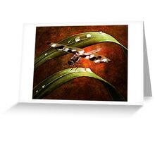 Dragon Wings Greeting Card