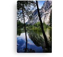 Overflowing Canvas Print