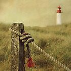 to the lighthouse by hannes cmarits
