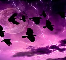 Thunder bolts and lightening by Andrew (ark photograhy art)