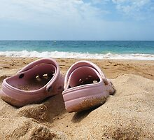 Crocs on the Beach by Wendy Williams