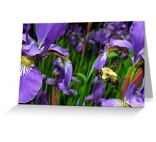 Bee Flying In Siberia Greeting Card