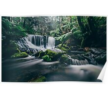 Horseshoe Falls, Mt. Field National Park Poster