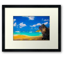 St Vincent Beach Framed Print