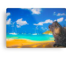 St Vincent Beach Metal Print