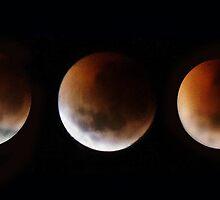 Lunar eclipse time lapse by Robyn Lakeman