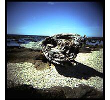 Coast #05 Photographic Print