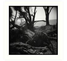 Trees #03 Art Print