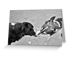 Collie Kisses Greeting Card