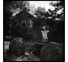 Fox gardens Photographic Print