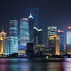 Pudong Skyline by Steen Nielsen