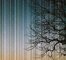 Streaks in the Sky by castawayplanet
