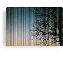 Streaks in the Sky Canvas Print