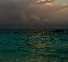Storm approaching - Zanzibar by Ulla Jensen