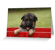 Puppy in a Wagon Greeting Card