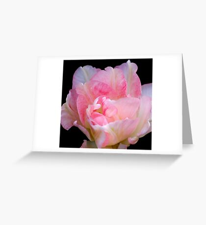 The Art Of A Simple Flower Greeting Card