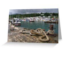 Lyme Regis Harbour Aspect Greeting Card