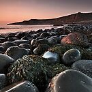 Dunstanburgh Dawn by Phillip Dove