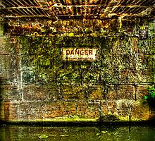 Dangerous Waters by Richard Jackson