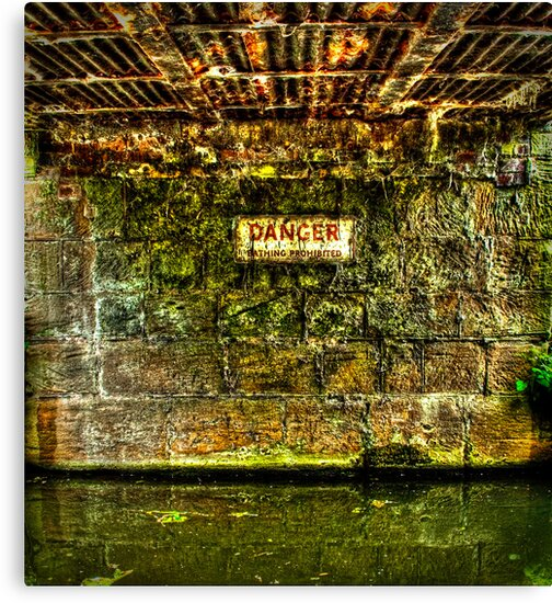 Dangerous Waters by Richard Jackson