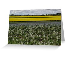 A Touch of Blue And Yellow Greeting Card