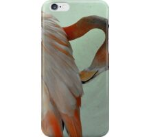 Stratch that itch iPhone Case/Skin