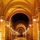 Freyung Passage, Vienna by bubblehex08
