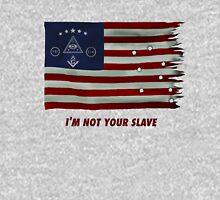 Illuminati flag Unisex T-Shirt