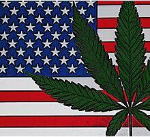 Americana Cannabis Flag Photographic Print