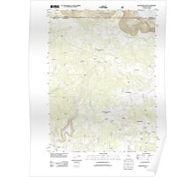 USGS Topo Map California Beaver Mountain 20120312 TM Poster