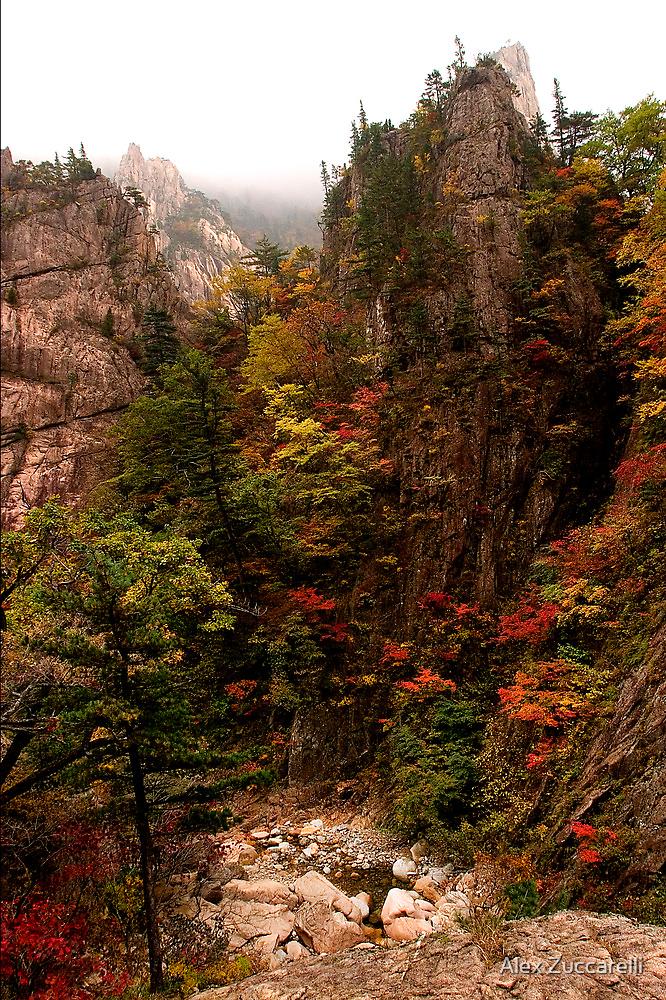 Spires - Seoraksan National Park, South Korea by Alex Zuccarelli
