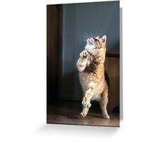 Dancing cat Greeting Card