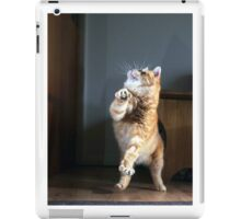 Dancing cat iPad Case/Skin
