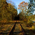 train tracks by joeymeuser