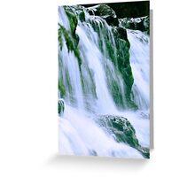 Tas, Liffy Falls Greeting Card