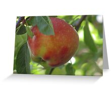"""Red Apple"" Greeting Card"
