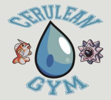 Cerulean City Gym by Matae187