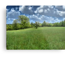 Appalachian Green Metal Print