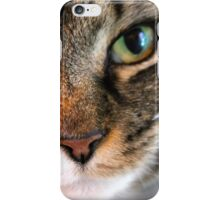Maine Coon iPhone Case/Skin