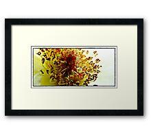 Guts Of A Flower Framed Print