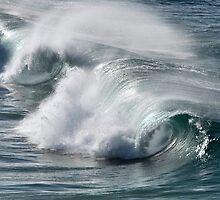 Rolling Surf - SE Qld Australia by Barbara Burkhardt