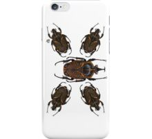 Goliath Flower Beetle iPhone Case/Skin