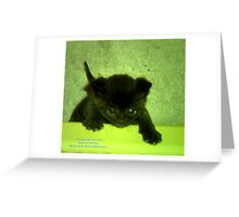 Mamma!! I love you! Greeting Card