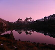 Purple Cradle by Paul Campbell  Photography