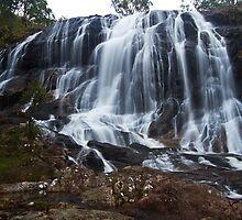 Basket Falls base view - Boonoo Boonoo NSW by Steve Bass