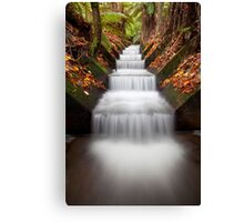 Mallesons Glen Canvas Print