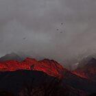 Last Sunrise of 2010 by AnastasiART
