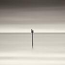linearis by GlennC