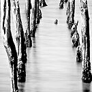 Old Jetty in Black and White by pennyswork